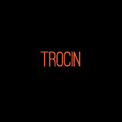 Trocin
